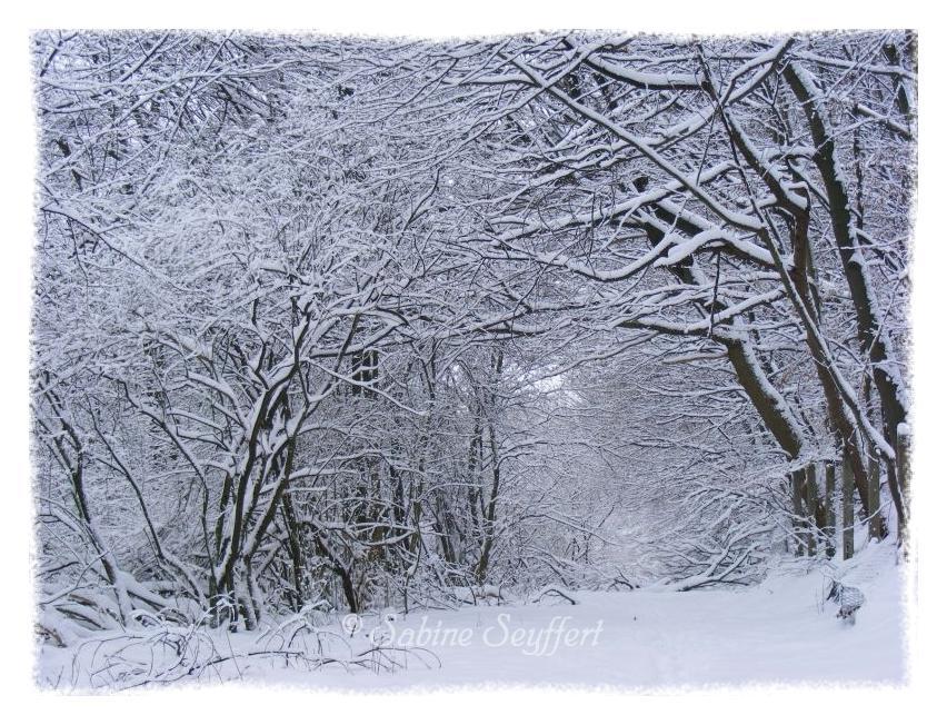 tanz ideen kita winter