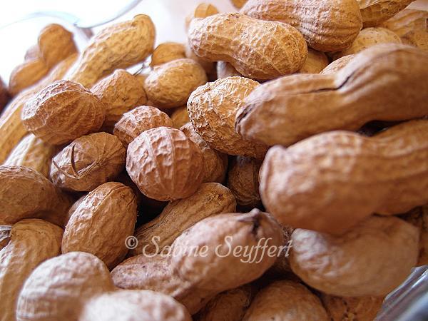 Erdnusskette 1