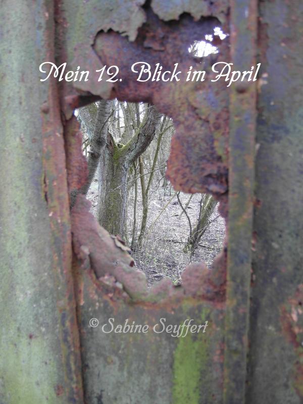 12 Blick 2 April