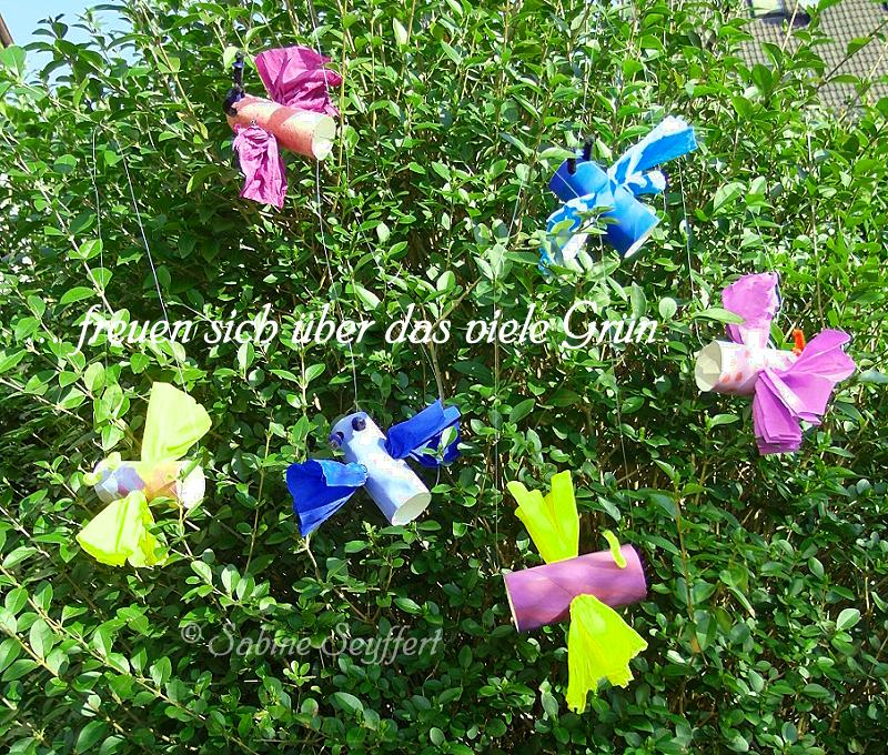 Schmetterling vorletztes Bild