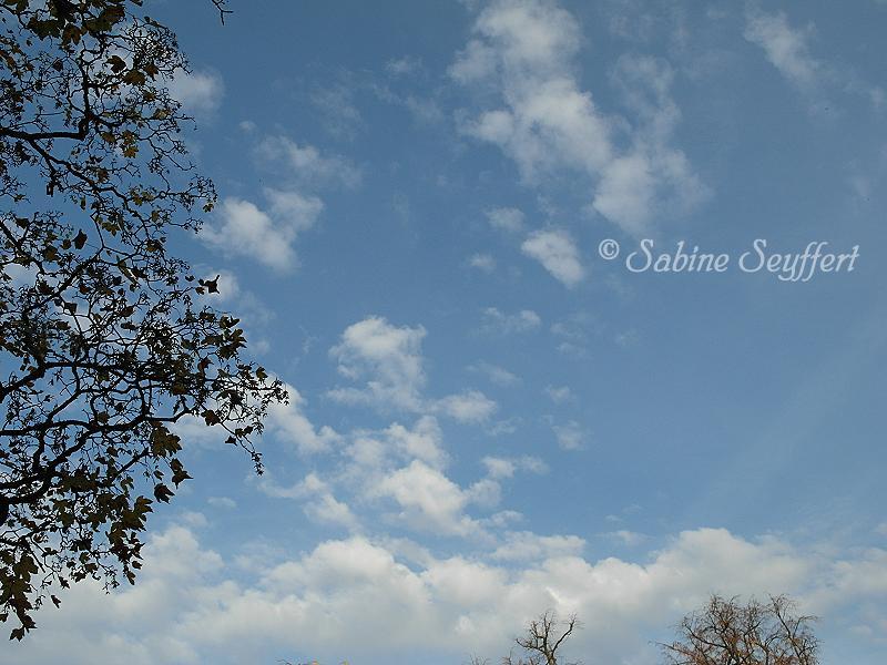 Herbsthimmel 8