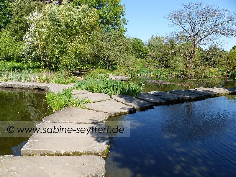 Südpark Weg durchs Wasser