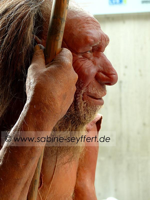 Neandertaler Museum