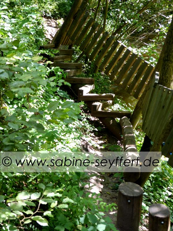 Auflug Schloss Thurn Motorik im Wald