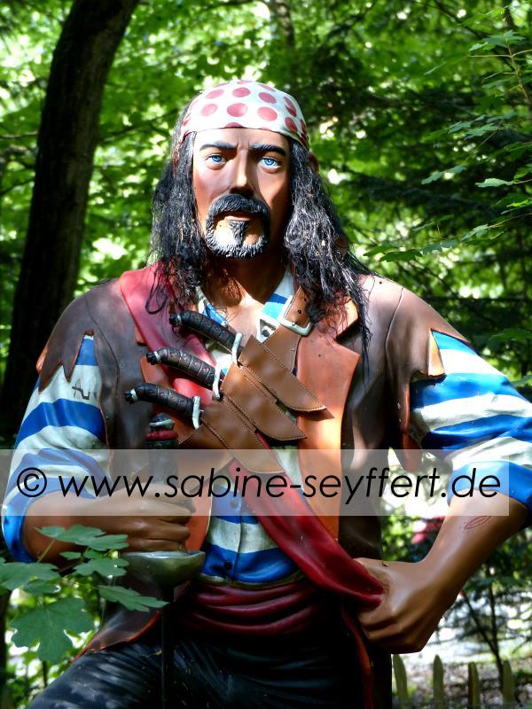 Auflug Schloss Thurn Pirat