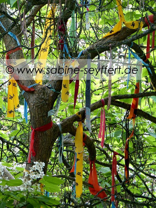 Botanischer Garten bunter Baum