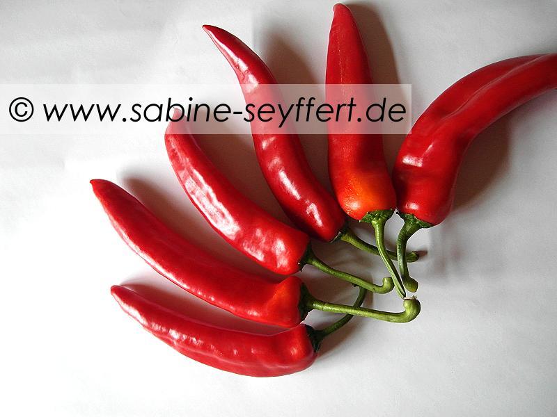gefuellte-spitzpaprika-7