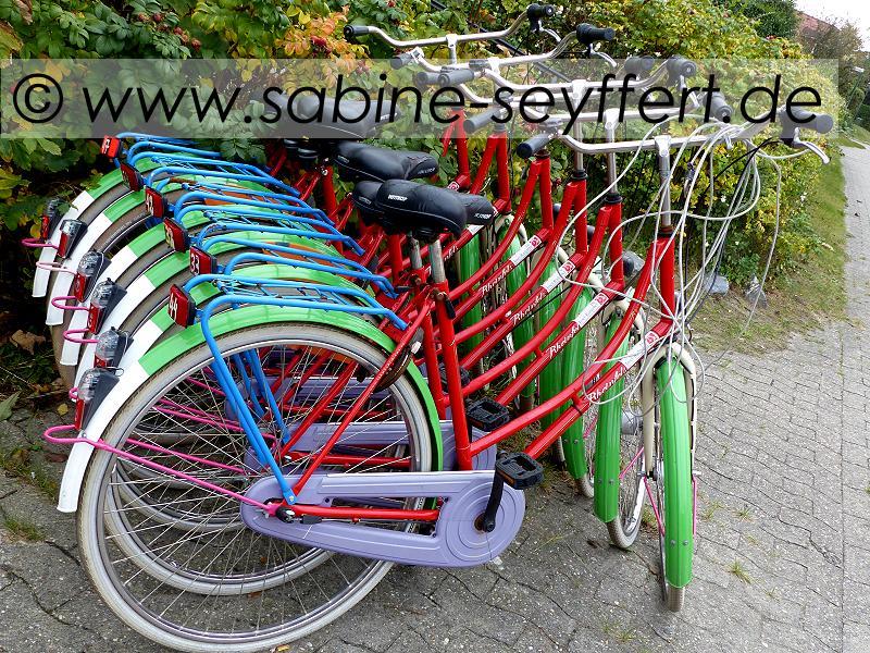 fahrrad-konvolut-bunt-quer
