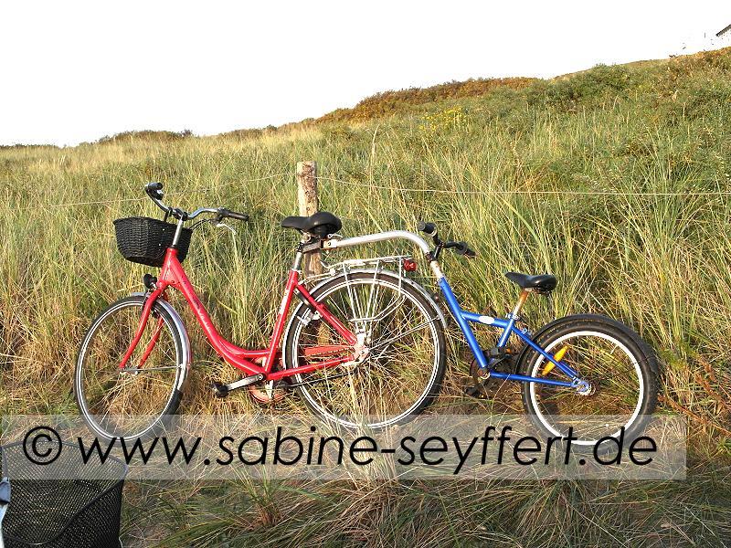fahrrad-mitnehmer