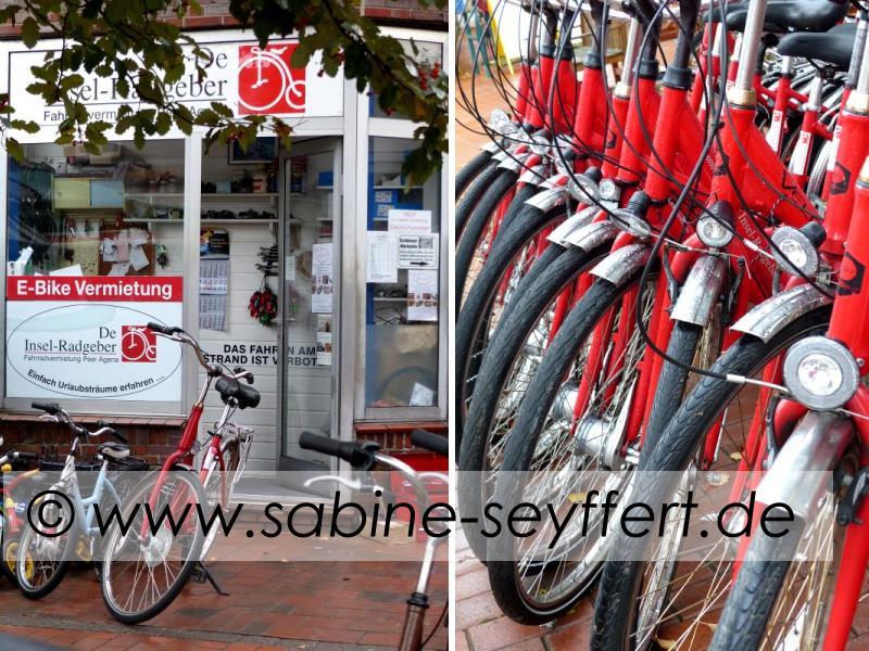 fahrrad-radgeber-barkhausen-doppel