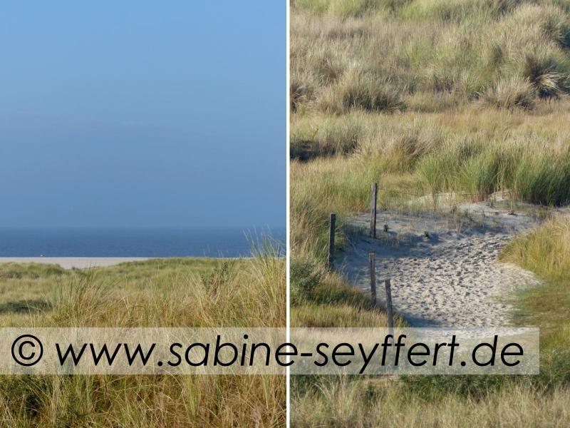 flinthoern-meerblick-und-sandweg-duene