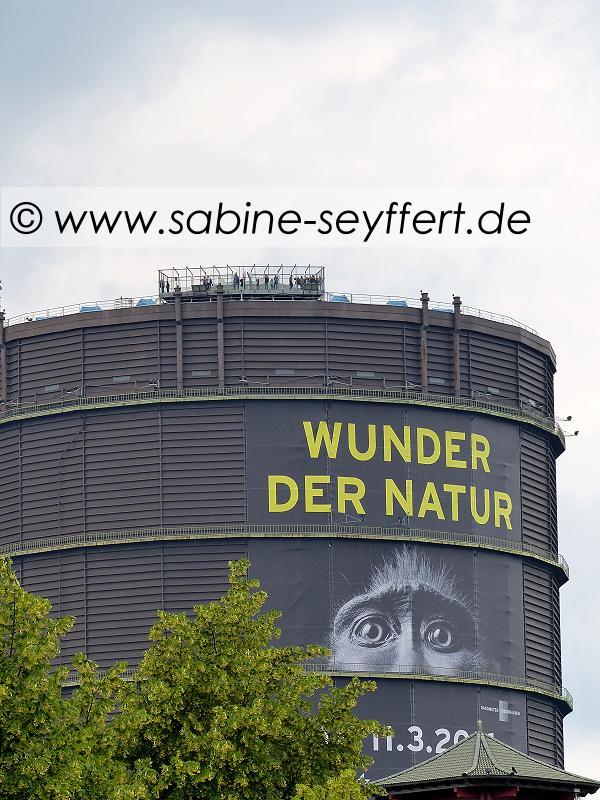 gasometer-wunder-der-natur-aussen